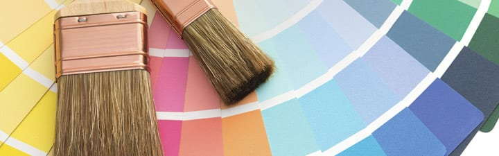paint brushes and samples Benjamin Moore
